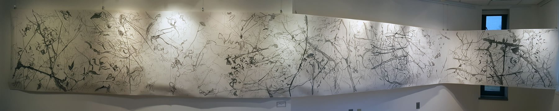 Drawing in Place: Recent Works by Eric Kniss in the Fine Arts Gallery