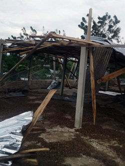 Haitian chicken house damaged by Hurricane Matthew